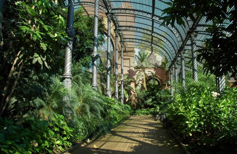 L`UMBRACLE – ботанический мини-сад