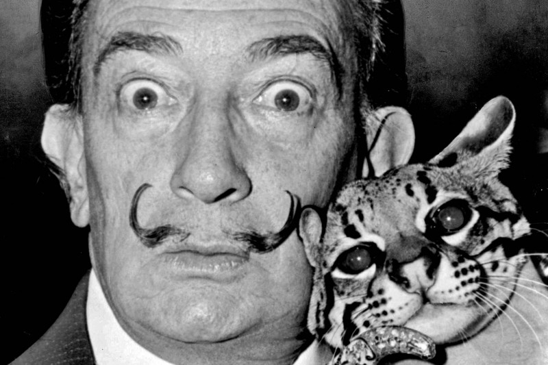 Сальвадор Дали (Salvador Dalí)