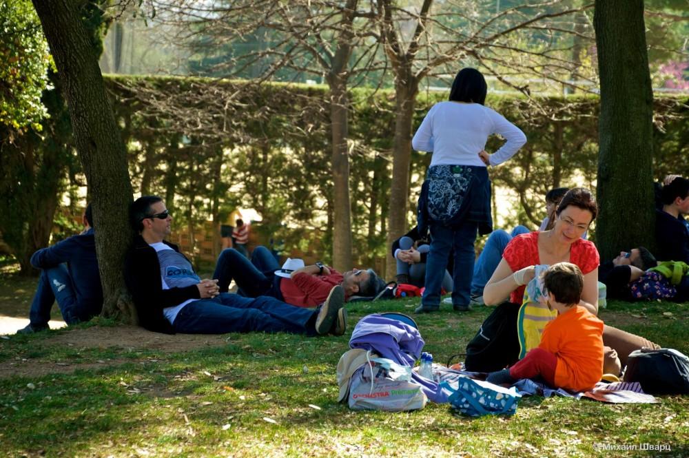 Барселонцы на пикнике