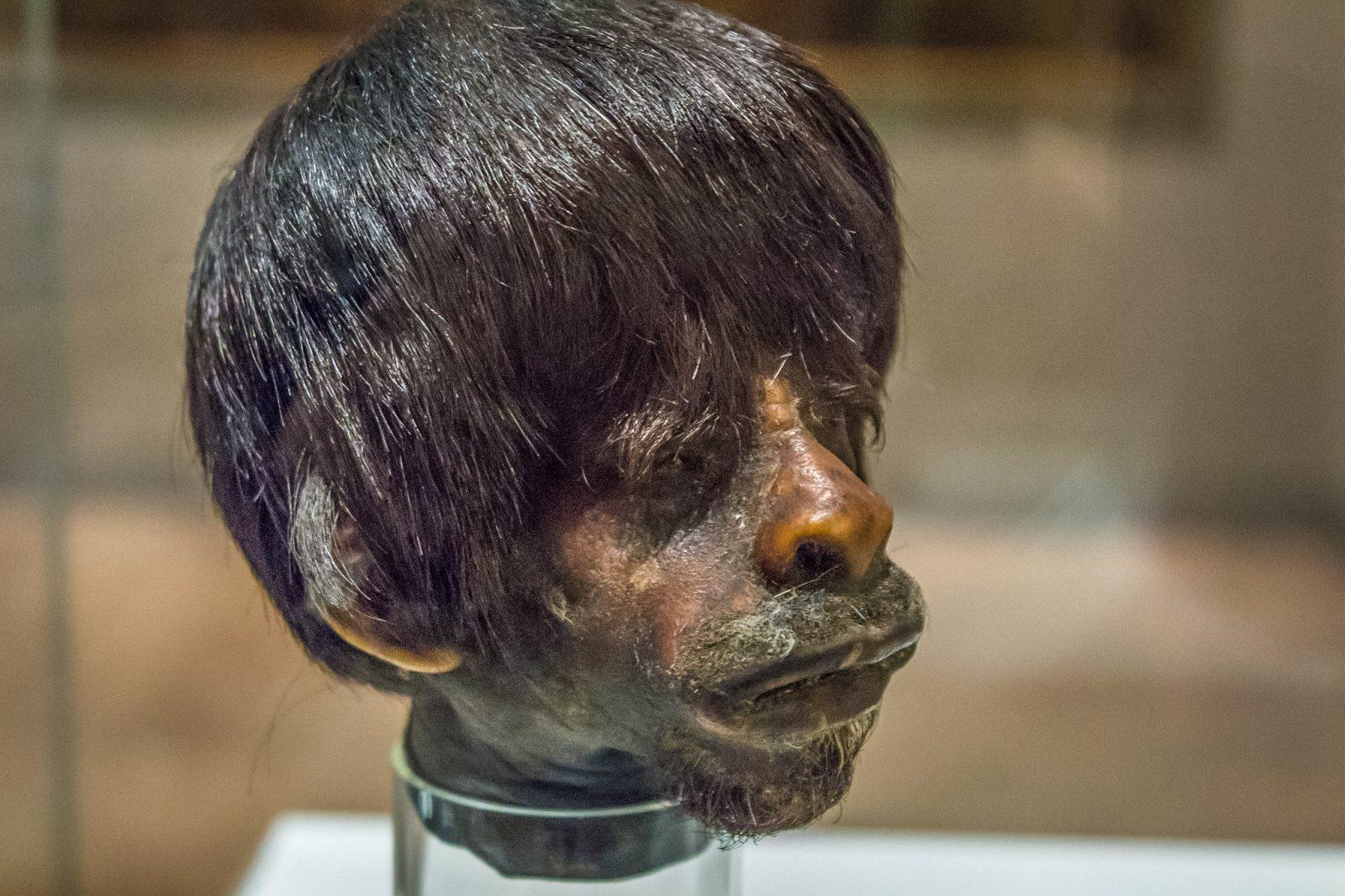 Голова древнего жителя Америки