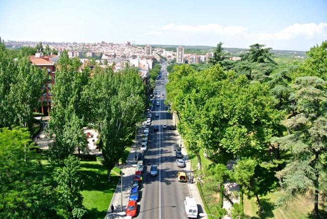 Вокруг Королевского дворца в Мадриде (Мой фото отчет) 48