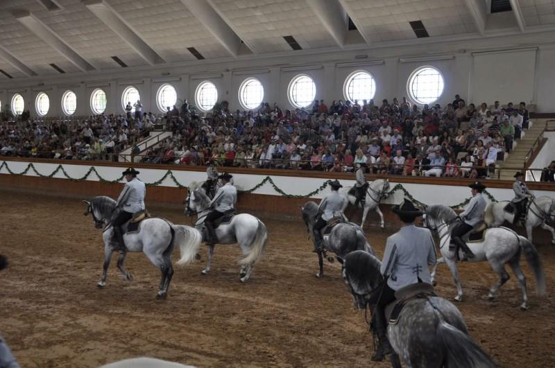 Королевская Андалусская Школа (Real Escuela Andaluza del Arte Ecuestre)