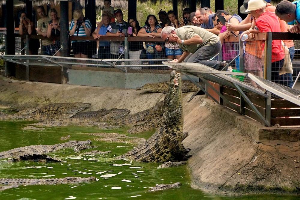 Парк крокодилов (фото: IIISchools Marbella)