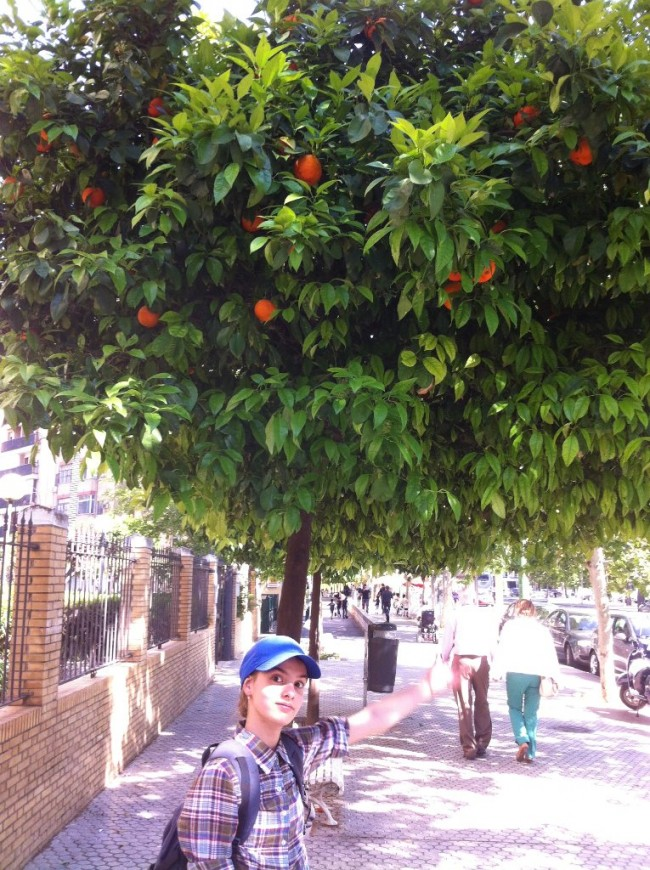 Папа, если эти апельсины такие горькие, как ты говоришь, то почему снизу все оборвано? Это потому, что нас советских людей учили «Доверяй, но проверяй»!