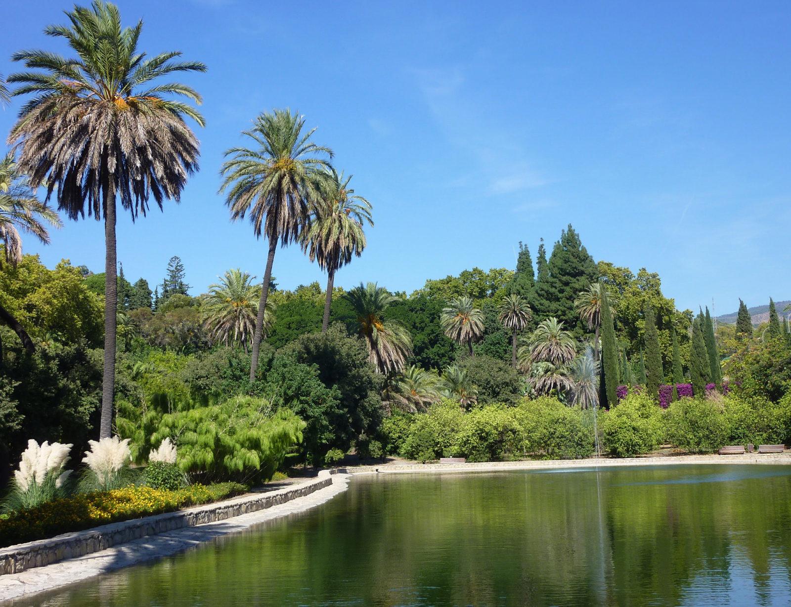 В ботаническом саду, фото Christopher West