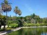 Ботанический сад Ла Консепсион 12