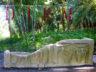 Ботанический сад Ла Консепсион 8