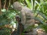 Ботанический сад Ла Консепсион 1