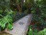 Ботанический сад Ла Консепсион 10