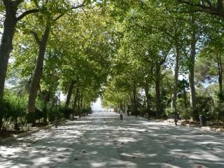 Аламеда дель Тахо — городской парк, ботанический сад и культурный центр Ронды