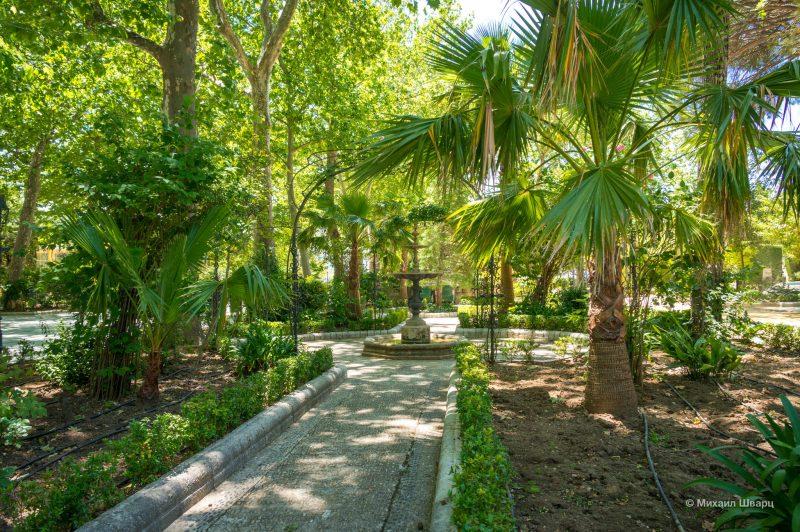 В парке много различных деревьев
