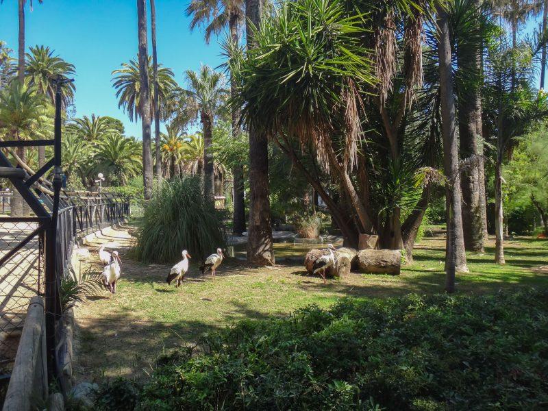 В Зооботаническиом саду