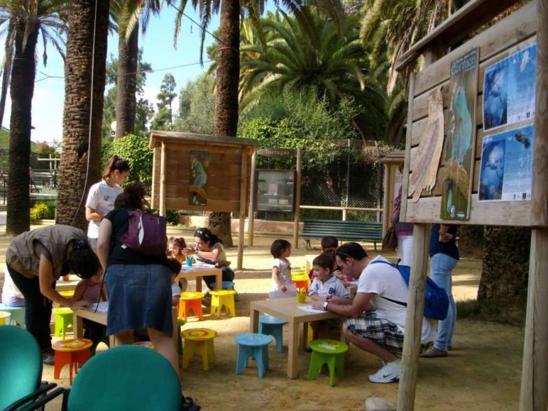Детская площадка в Зооботаническом саду