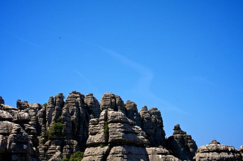 Скалы Эль Торкаль и вдалеке хищник