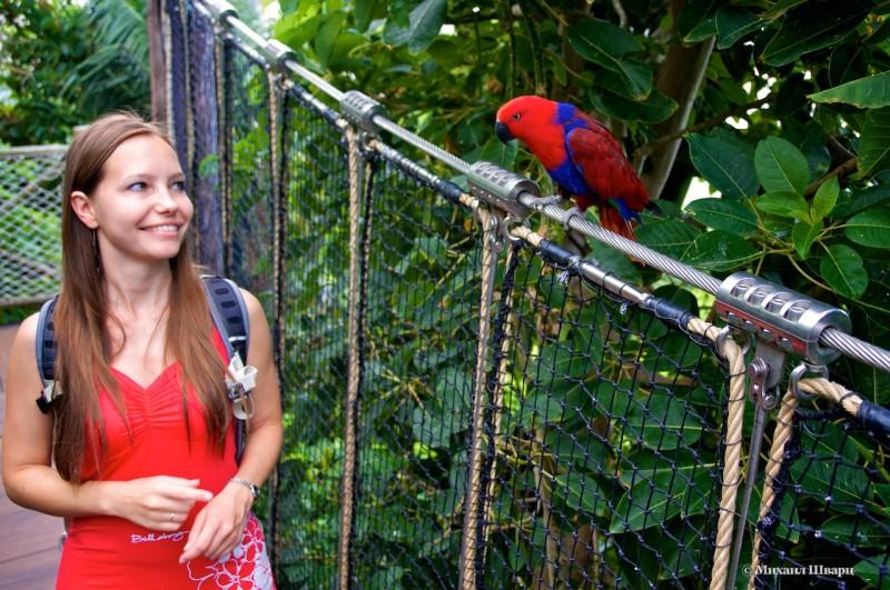 Лена и попугайчик