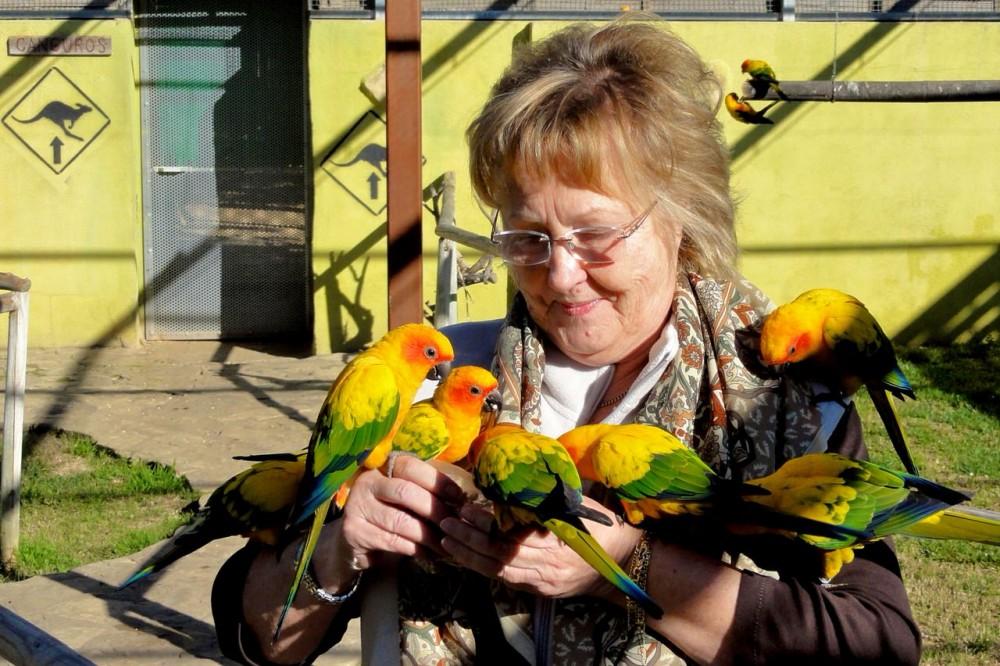 Дружелюбны попугайчики (фото: Wolfgang Appel)