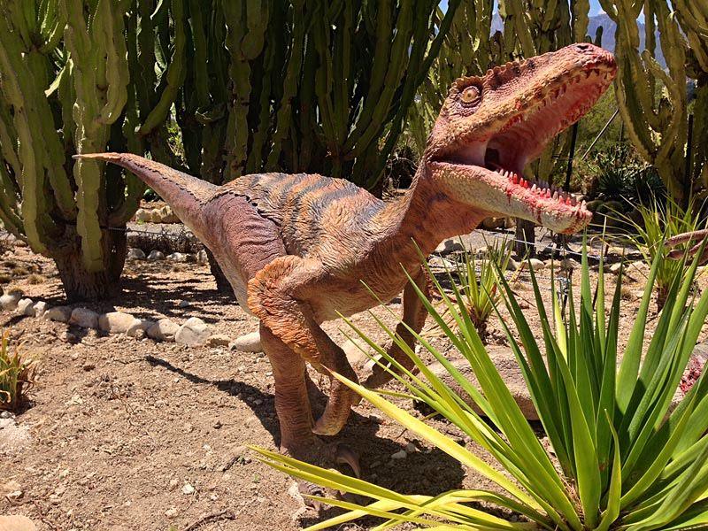 Голодный динозаврик (фото: dinopark)