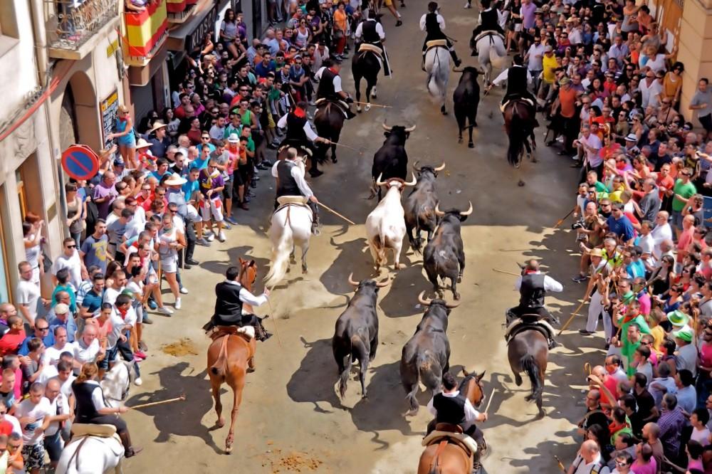 Пробег быков и лошадей (фото: carlos martinez)