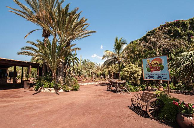 Оазис Парк (Oasis Park)