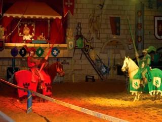 Рыцарский турнир в замке Вальтордера