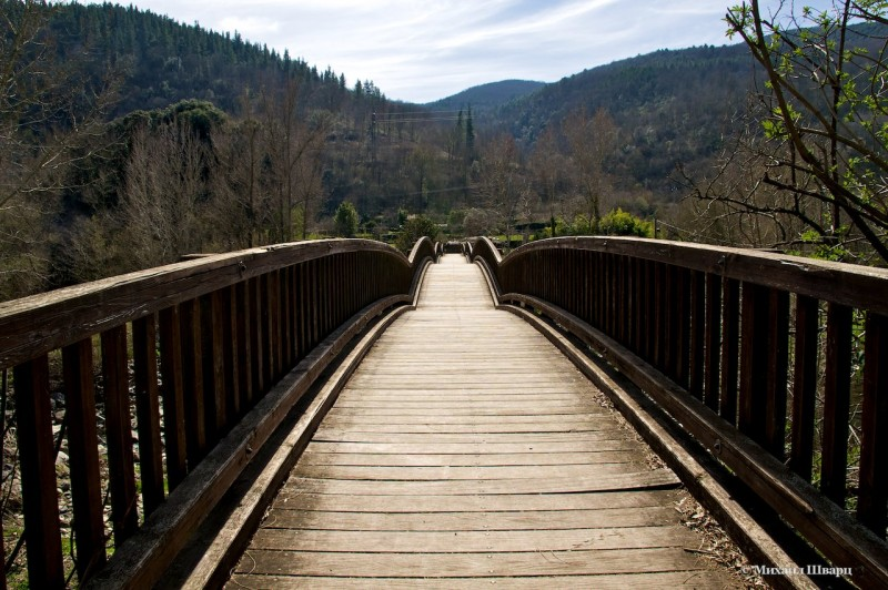 Волнистый деревянный мост