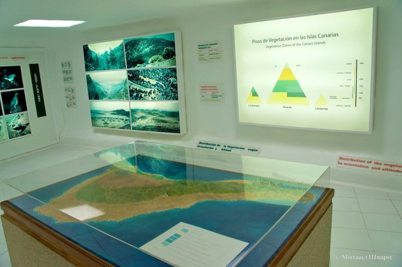Музее научного центра – «Дом Вулканов»
