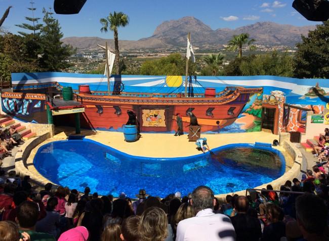 Представление с морскими котиками в парке MundoMar