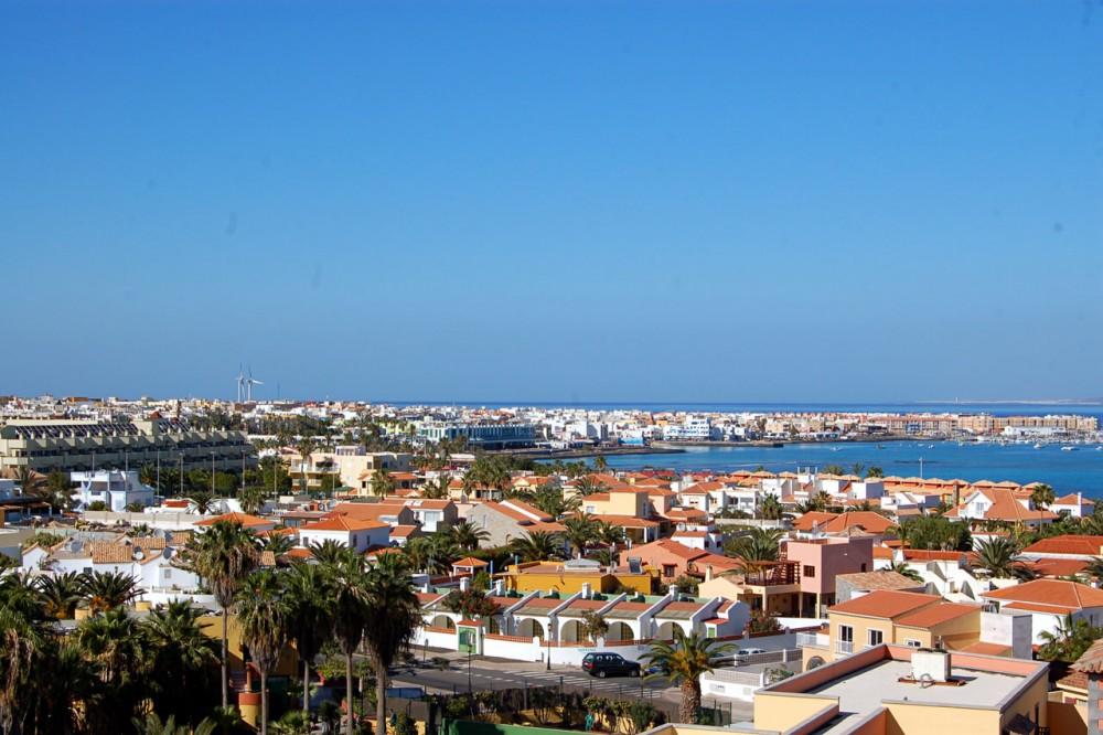 Вид на город с колокольни (фото: Haggs)