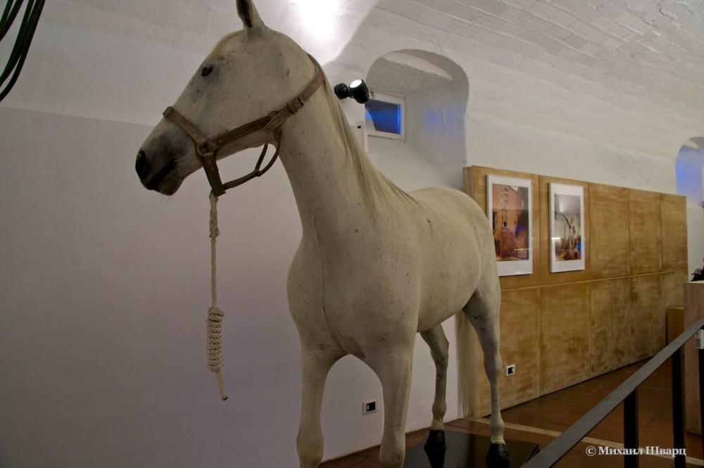 Чучело белой лошади