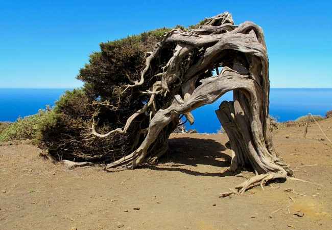 Остров Иерро