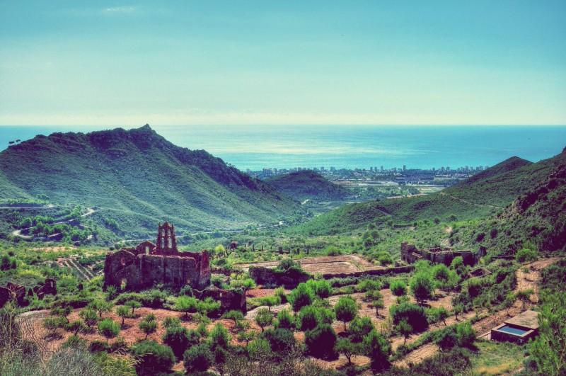 Парк Desierto de las Palmas (Фото Abariltur)
