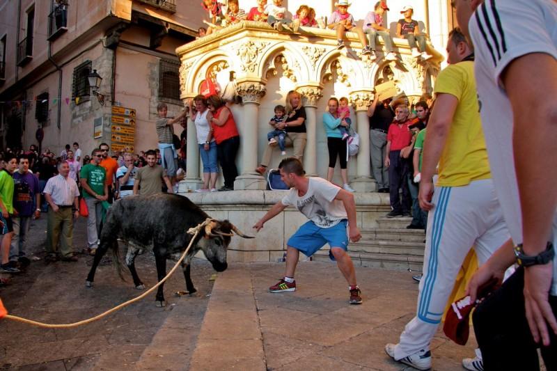Забег молодых бычков, площадь Майор