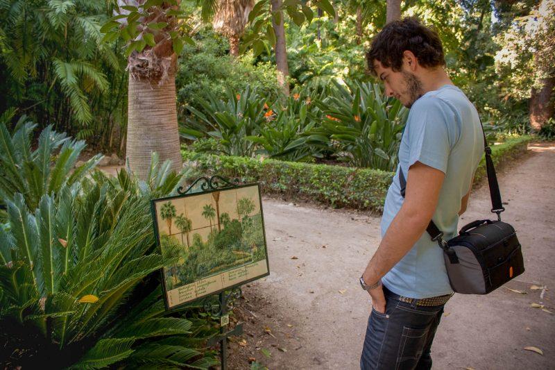 Ботанический сад Ла-Консепсьон