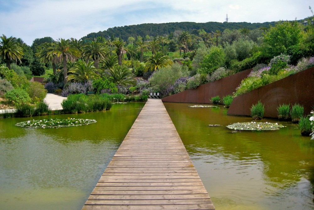 Ботанический сад на горе  Монжуик (фото: Carquinyol)