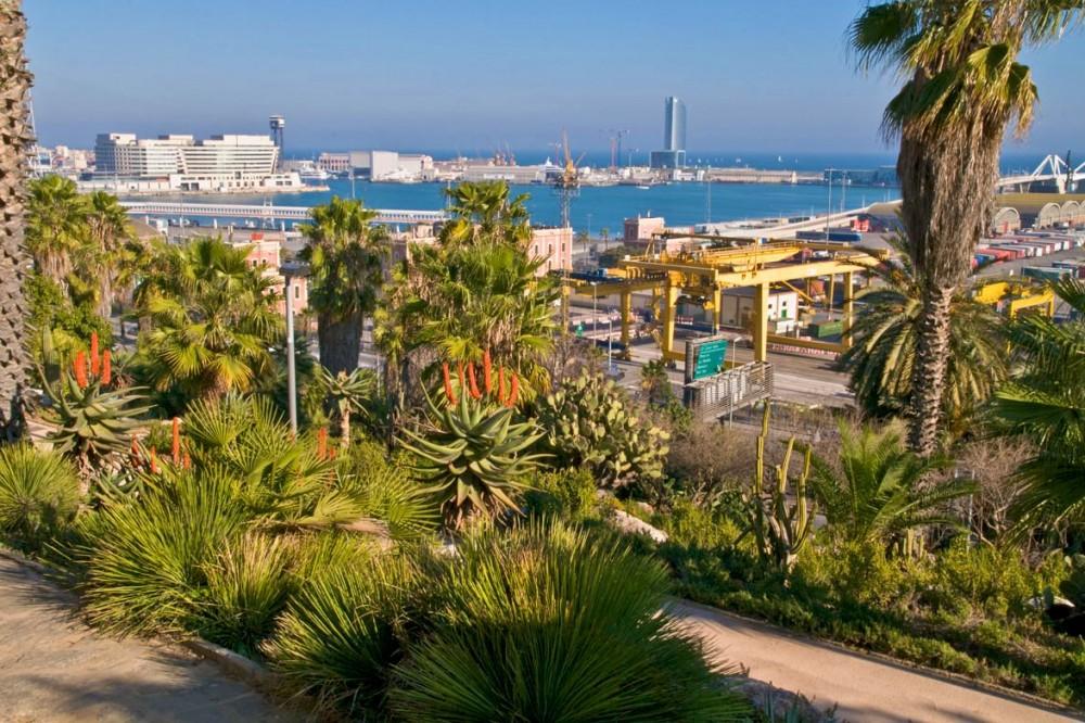 Вид на порт (фото: Bartolome Muñoz)