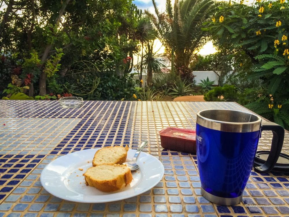 Завтрак под пальмами