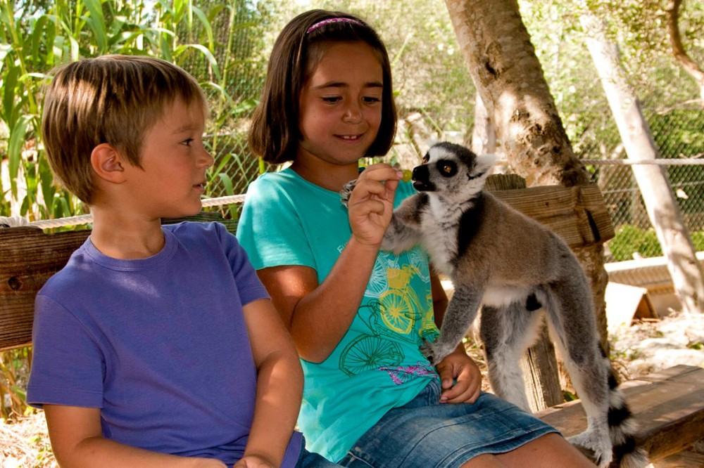 Зоопарк Менорки (фото: Lloc de Menorca Centre Zoologic)