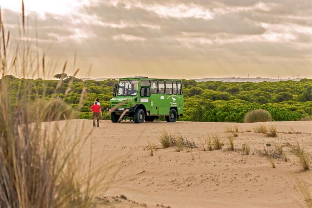 Дюны в парке Doñana (фото: JF Rodriguez Baena)