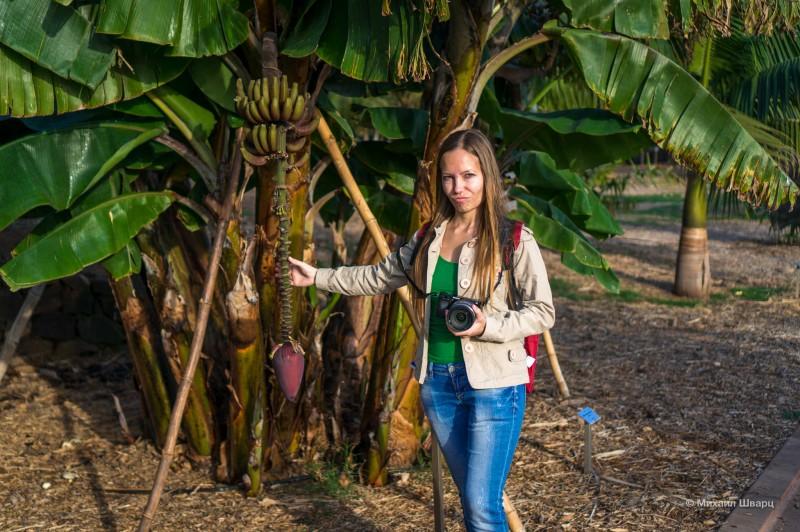 Посетили парк с пальмами