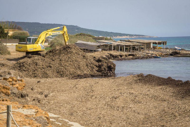 Чистят пляж – готовятся к сезону