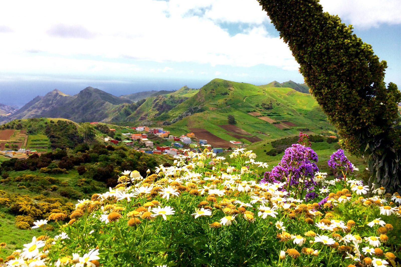 Пейзажи парка Анага (фото: Arianna C.)
