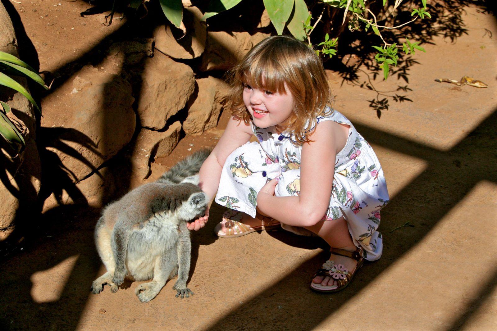 Monkey Park на Тенерифе (фото: Chris Morgan)