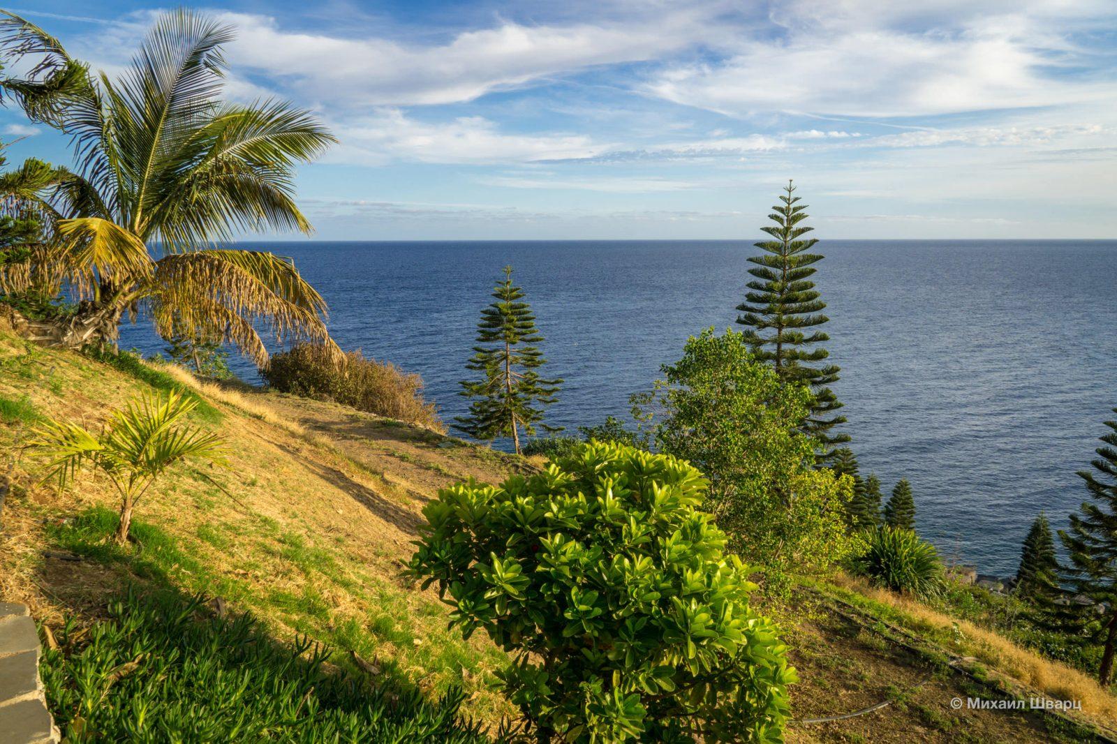 Вид из парка на океан