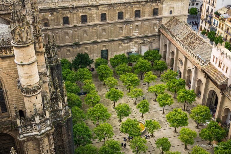Вид на Кафедральный собор и Апельсиновый дворик