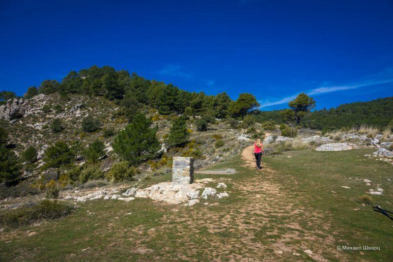 Парки и замки вокруг Гранады и Хаэна: что посмотреть? 7