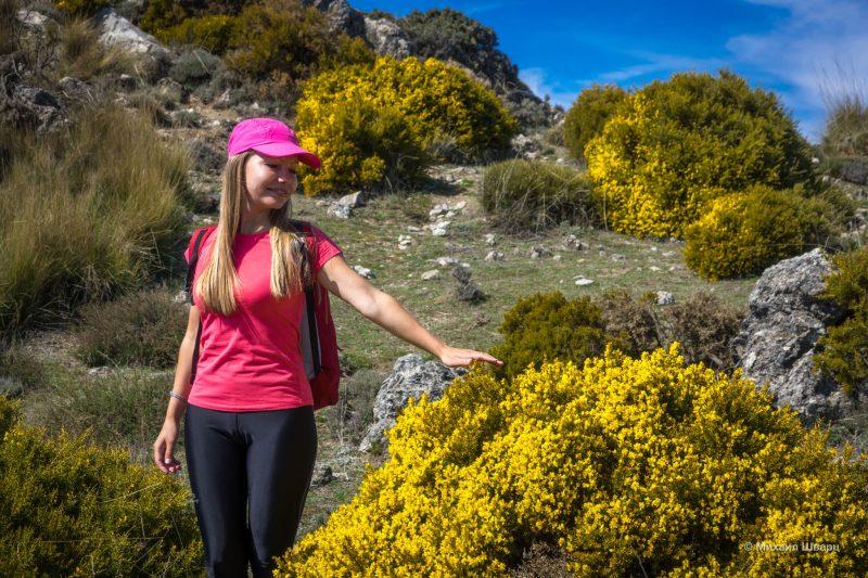 Парки и замки вокруг Гранады и Хаэна: что посмотреть? 8