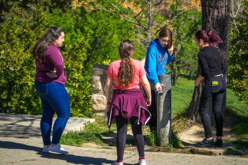 Парки и замки вокруг Гранады и Хаэна: что посмотреть? 37