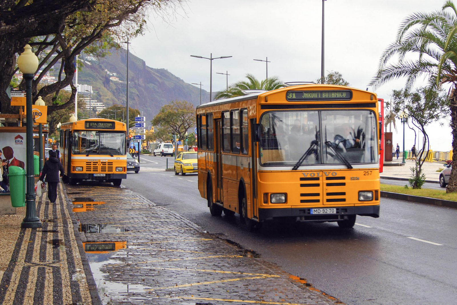 Автобус до Jardim Botânico (фото: kfinlay)