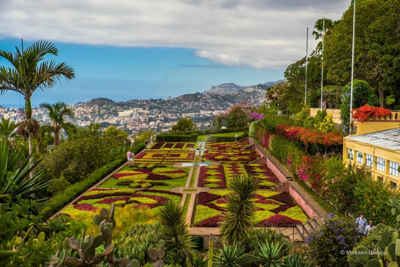 Ботанический сад Мадейры имени инженера Руя