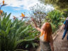 Ботанический сад Мадейры 2